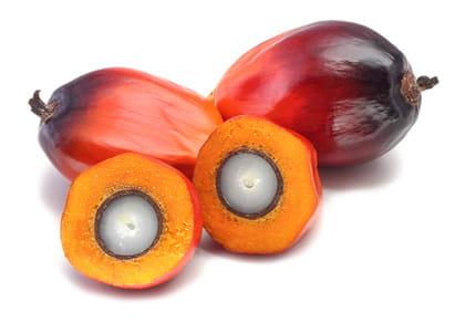 Olej Palmowy Rafinowany 1kg Zsk